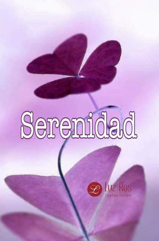 dibujo de flor tonos morados, texto Serenidad.